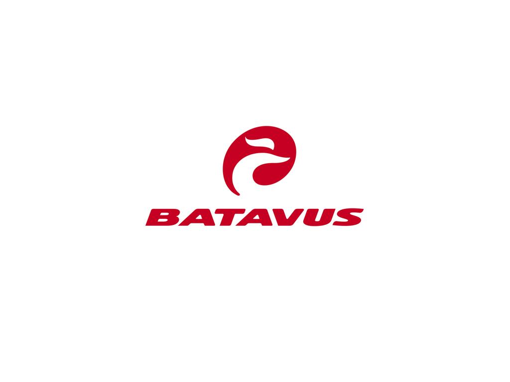 Geardrop til Batavus cykler