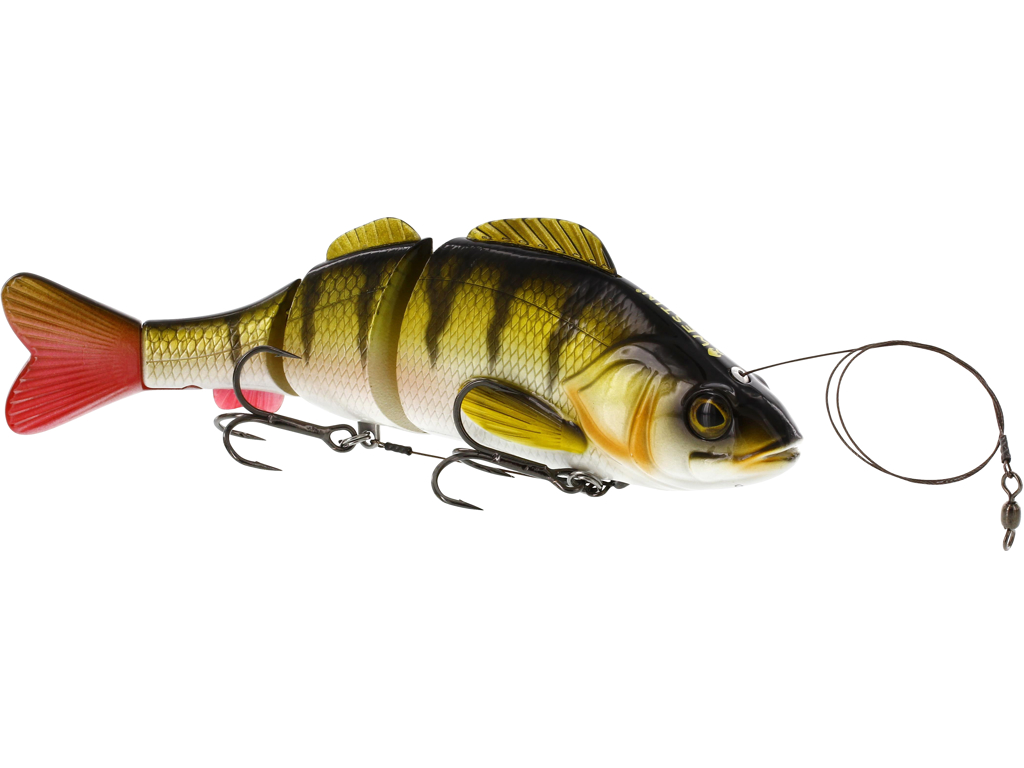 Percy the Perch Inline