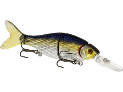 Ricky the Roach Swimbait w. Lip 8cm 7g Sinking