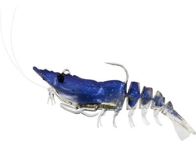 Salty the Shrimp R'N R