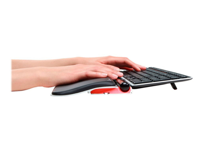 Rollermouse Red Plus + Tastatur Balance