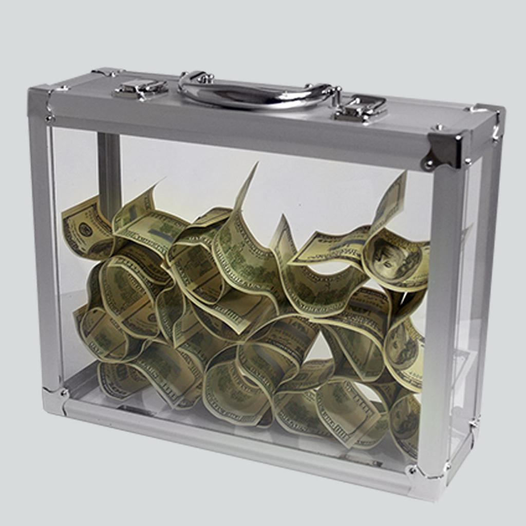 TORA GLASSY BRIEFCASE