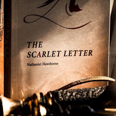 SCARLET BOOK TEST - Josh Zandman