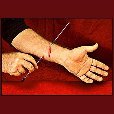 FAKIRNÅLEN - Needle Thru Arm