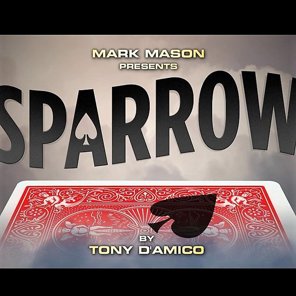SPARROW - Tony D'amico
