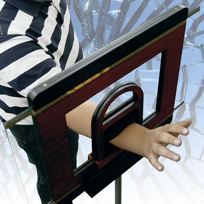ARM THROUGH GLASS - de-luxe