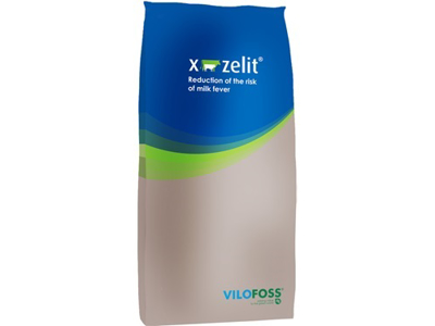 X-Zelit 25 kg