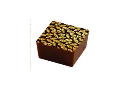 Chokoladefolie Cacaobønner