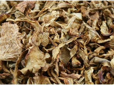 Svampe Kantareller Øko 250 gram