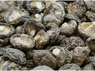 Svampe Shiitake øko 300 gr.
