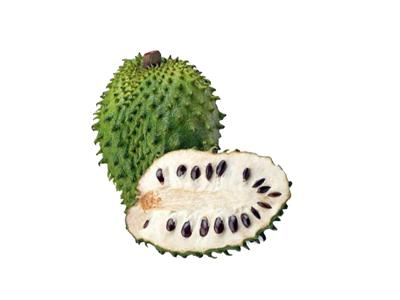 Frugtpure Guanabana á 250 gr