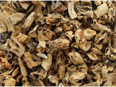 Svampe Morkelhaler Øko 300 gr