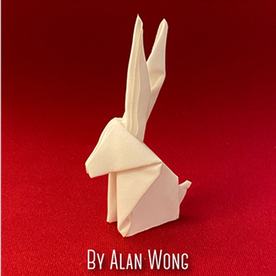 ORIGAMI RABBIT - Alan Wong