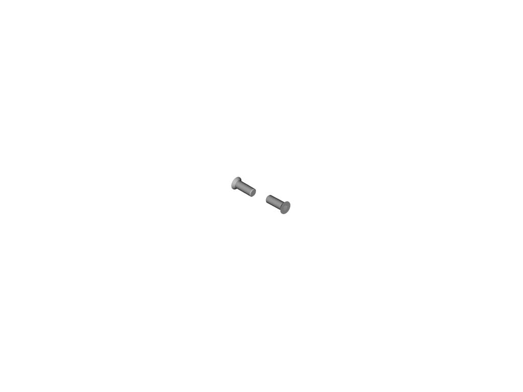 Shimano GRX - Skrue til pulleyhjul - 2 stk. - RD-RX810T