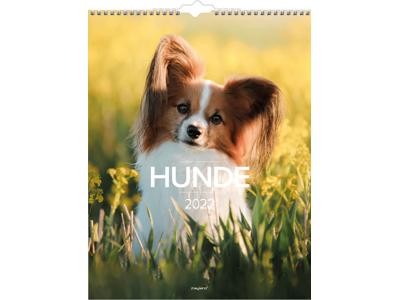 Vægkalender, Hunde, FSC Mix