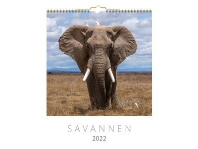 Vægkalender, Savannen, FSC Mix
