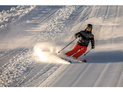 Trespass Tinlaw - Skijakke - Grå