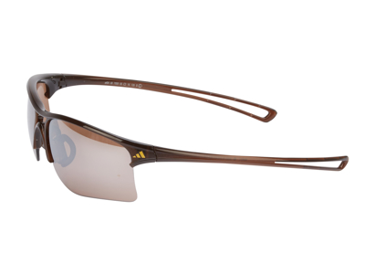 Adidas Raylor - Løbe- og Cykelbrille - Shiny Brown/Contrast