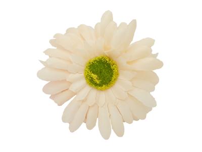 Atredo - Ringeklokke - Blomst - Marguerit - Hvid/gul