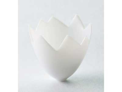 Cáscara de huevo de plastico