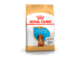 ROYAL CANIN DACHSHUND JUNIOR KOIRANRUOKA