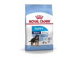 ROYAL CANIN MAXI PUPPY HUNDEFÔR