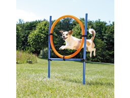 TRIXIE AGILITY-RING