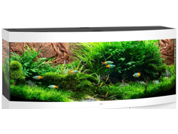 JUWEL MODEL VISION 450 LED AKVARIE