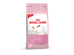 ROYAL CANIN MOTHER AND BABYCAT KATTMAT