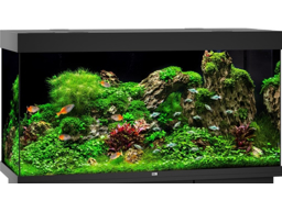 JUWEL MODEL RIO 350 LED AKVARIE