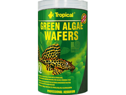 TROPICAL GREEN ALGAE WAFERS FISKEFÔR