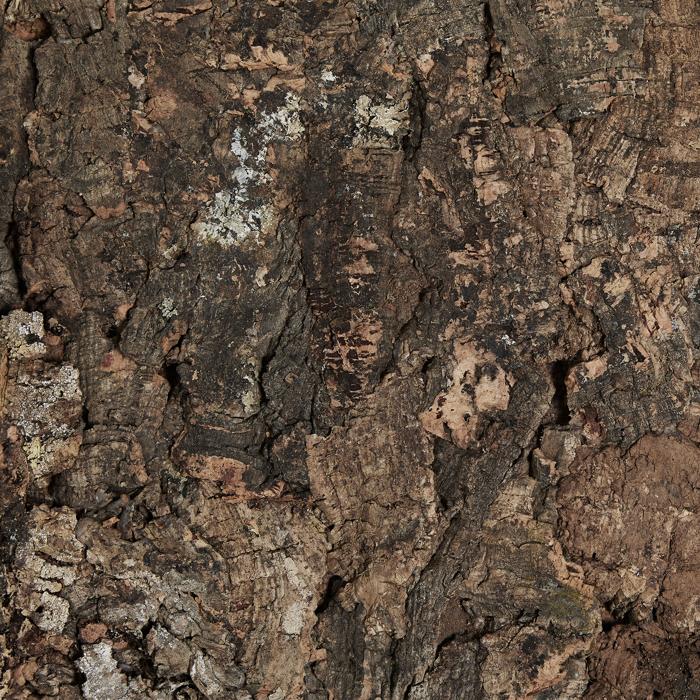 Virgin Cork Background